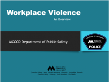 Workplace Violence Overview