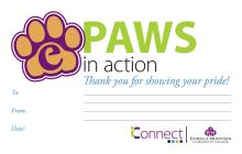 Paws in Action certificate